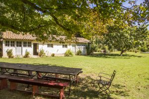 location chateau vacances piscine provence alpilles