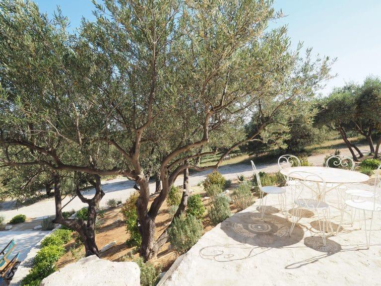 location saisonniere villa alpilles