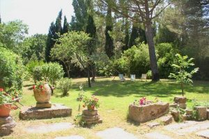 location-maison-piscine-remy provence6